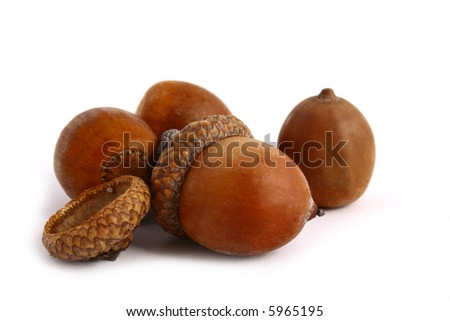 Autumn leaves and acorns frame isolated on white. - stock photo