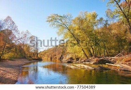 autumn leaves and trees on river - stock photo