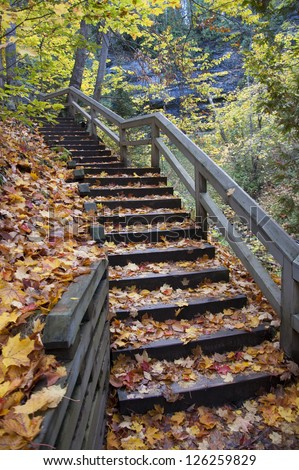 Autumn leaves as ground cover on forest staircase - stock photo