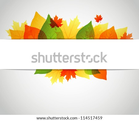 Autumn leaves back - stock photo