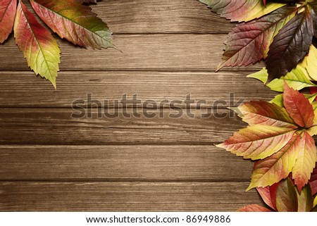 Autumn leaves background with copy space - stock photo