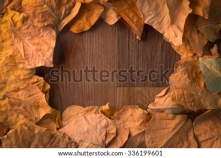 autumn leaves fall to wood floor background frame - stock photo