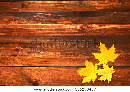 Autumn leaves frame - stock photo