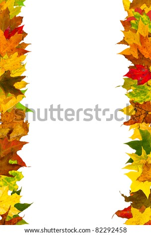 Autumn leaves frame, isolated on white. - stock photo