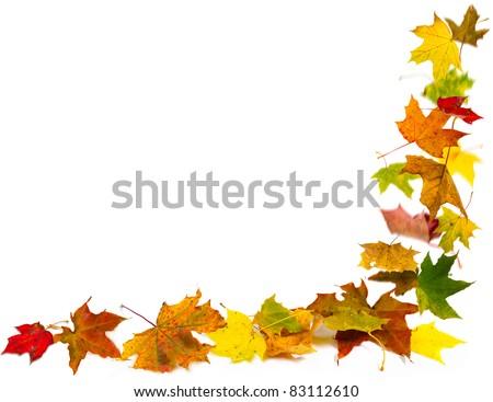 Autumn leaves frame, isolated on white. - stock photo