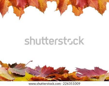 autumn leaves frame, isolated on white background - stock photo