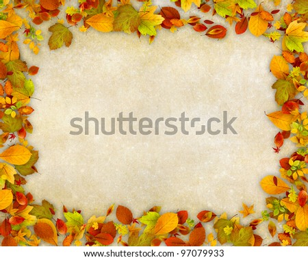 Autumn leaves frame on old paper background - stock photo