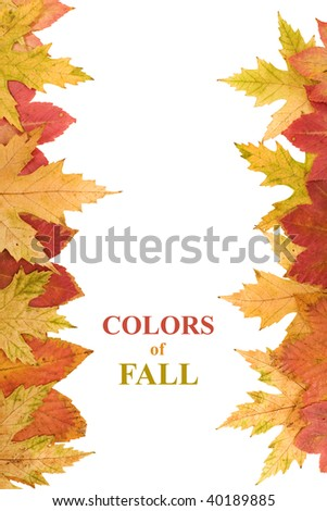 Autumn leaves framing copy space, design element - isolated - stock photo