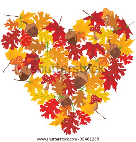 Autumn Leaves heart with toadstools and acorns. Isolated on white