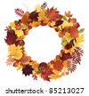 autumn leaves laid on a white background around - stock photo