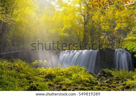 Autumn leaves oirase waterfall at Aomori Japan