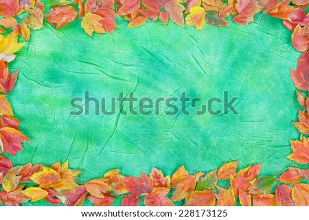 autumn leaves on a green background - stock photo