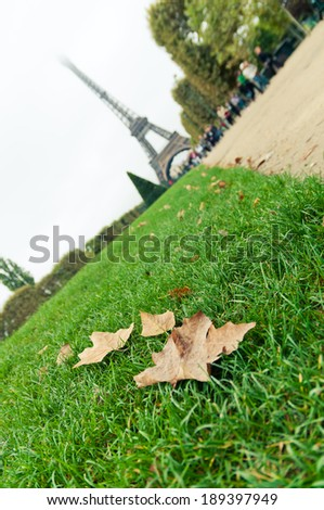 Autumn leaves on the grass, near the Eiffel Tower - stock photo