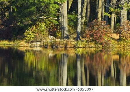 Autumn leaves on trees reflecting in a lake in Harriman State Park New York.