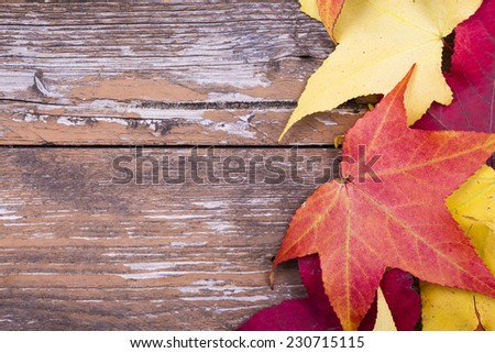 Autumn leaves over aged wooden background  - stock photo