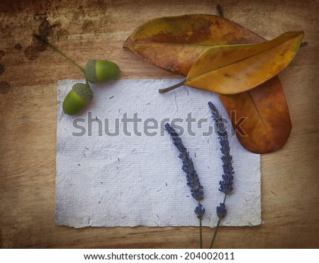 Autumn leaves over light wooden background with copy space of hand made paper, lavender flowers and green acorns - stock photo