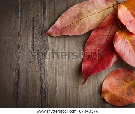 Autumn leaves over wooden background. With copy-space