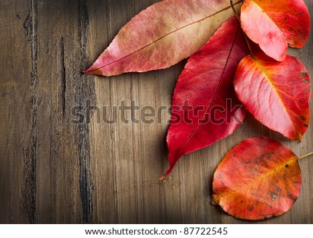 Autumn Leaves over wooden background with copyspace