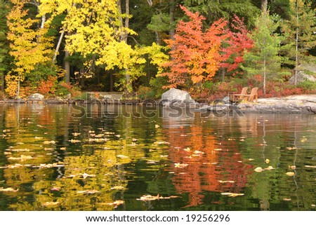 Autumn leaves reflected in a lake