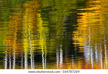 Autumn leaves reflecting in the water - stock photo