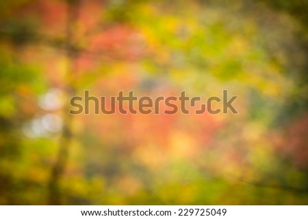 Autumn leaves taken in abstract can be used as a background or texture for your design projects. - stock photo
