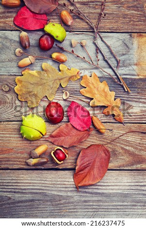 Autumn leaves with acorn, twig, chestnut over wooden background  - stock photo