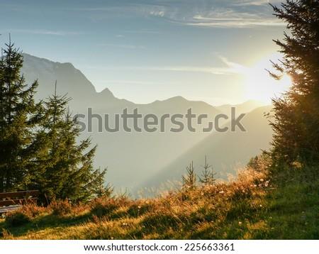 Autumn light in nature - stock photo