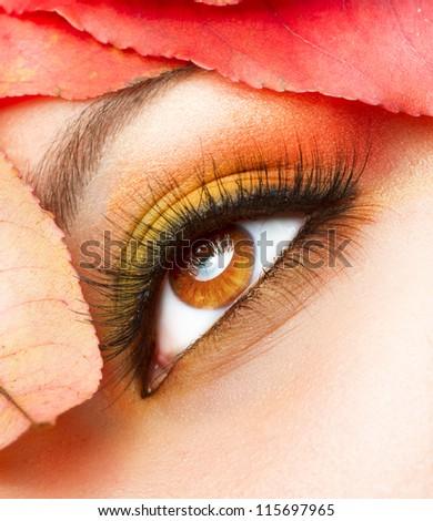 Autumn Makeup. Fall Make-up Closeup - stock photo