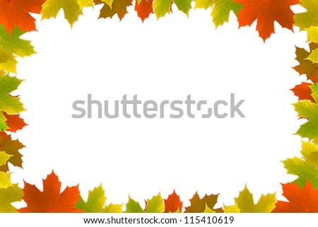 Autumn maple leafs background - stock photo