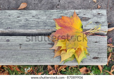 Autumn maple leafs over bench - stock photo