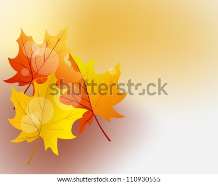 Autumn maples falling leaves background. - stock photo