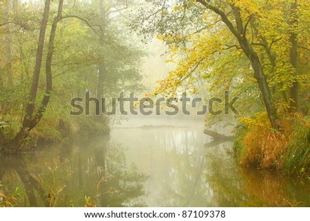 Autumn misty day on a Radbuza river. Beaver sanctuary.  Beautiful place in The Western Bohemia, Czech Republic, Europe. - stock photo