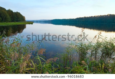 Autumn misty evening lake with grove on shore - stock photo