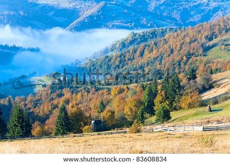 Autumn misty morning mountain valley (Carpathian Mt's, Ukraine). - stock photo