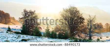 Autumn misty morning mountain view of cattle-breeding farm on plateau and country road (Carpathian Mt's, Ukraine). - stock photo