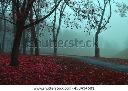 Autumn misty view of autumn park alley in dense fog - foggy autumn dusky landscape with bare autumn trees and red fallen leaves. Autumn alley in dense autumn fog. Soft filter applied. - stock photo