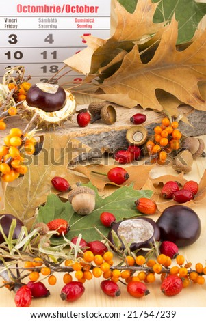 Autumn months October calendar with brown acorns,  chestnuts, rosehip, seabuckthorn, autumn leaves, on wooden background - stock photo