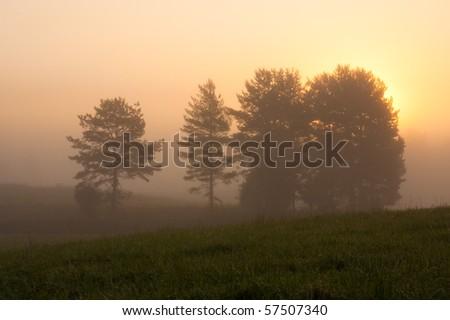 Autumn morning - stock photo