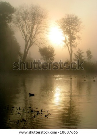 autumn morning mirror - stock photo