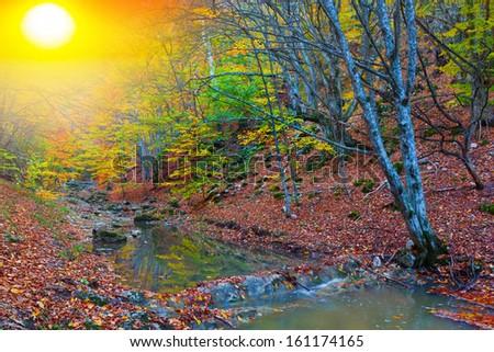 autumn mountain canyon - stock photo