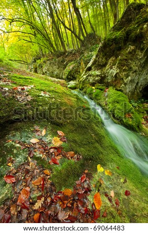 autumn mountain stream - stock photo