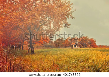Autumn mysterious landscape with lonely abandoned house in the deserted old oak grove in foggy cloudy weather. Soft focus and creative filter applied. - stock photo