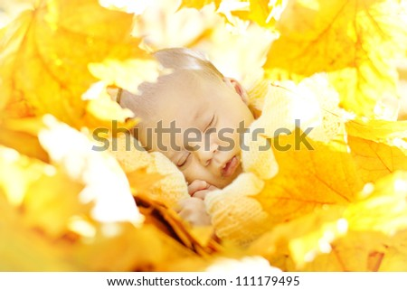 Autumn newborn baby sleeping in maple leaves. Close up portrait. - stock photo