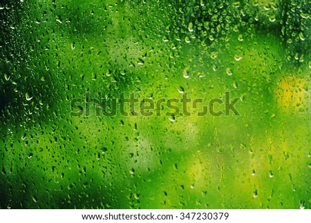 Autumn oк summer green background with raindrops on the glass, selective focus - stock photo