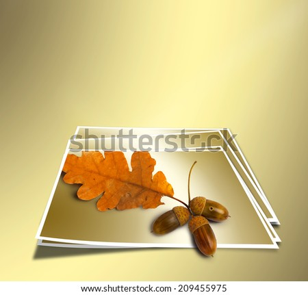Autumn oak branch with acorns on abstract gold background. Concept. - stock photo