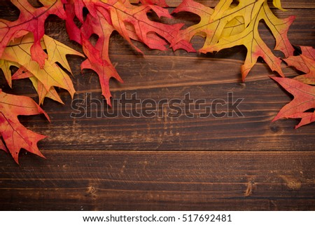 Autumn oak leaves on a wooden background forming a border