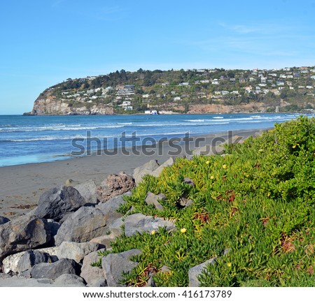 Autumn on Sumner Beach with Scarborough Hill in the background, Christchurch New Zealand. In the foreground is Ice plant with yellow flowers.