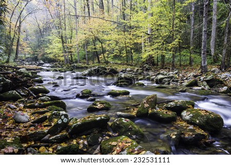 Autumn on the Middle Prong of the Little River, Great Smoky Mountains National Park, Tennessee. - stock photo