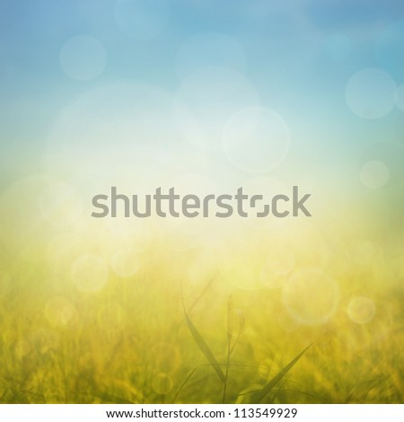 Autumn or summer abstract nature background with grass in the meadow and blue sky in the back - stock photo