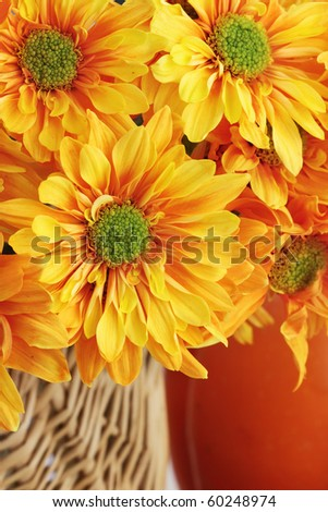 Autumn or Thanksgiving Bouquet with pumpkin background. Extreme shallow DOF. - stock photo